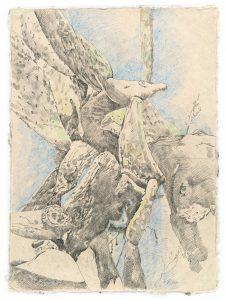 """""""Am Ozean II"""", Bleistift, Buntstift auf Papier, 2014, 80 x 60 cm"""